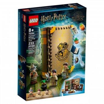 LEGO LEGO HARRY POTTER HOGWARTS™ MOMENT: HERBOLOGY CLASS 76384